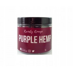 Kwiaty Purple Hemp 7g CBD