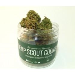 Kwiaty Konopie Hemp Scout Cookies 7g