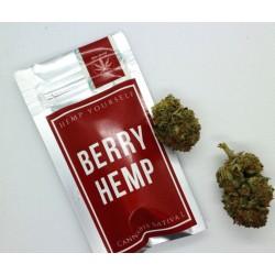 Kwiaty Konopie Berry Hemp 1g