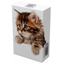 Etui na paczkę papierosów Kitty